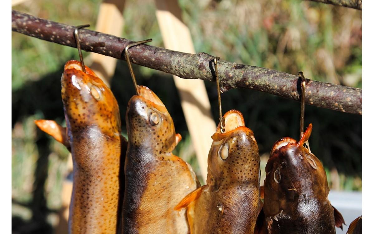 Jak wędzić ryby – Metody wędzenia ryb