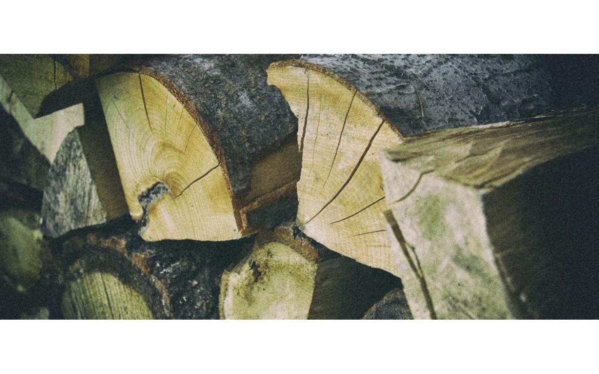 Jakim drewnem wędzić ? — Wybierz drewno do wędzenia